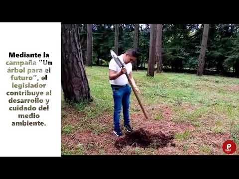 Paco Cedillo inicia campaña de reforestación en Nuevo Zirosto