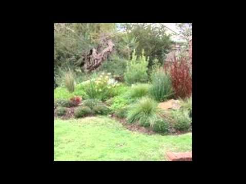 Australian Native Garden Ideas - YouTube