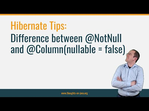 Hibernate Tips: Difference between @Column(nullable = false