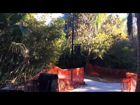 Cabana Bay Beach Resort garden walking path POV