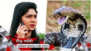 රජකම් කලත් කලකම් පලදෙනවා සත්තයි | Neela Pabalu | Sirasa TV Thumbnail