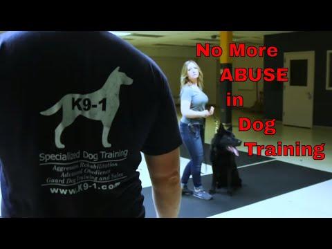learn-how-to-train-dogs-like-a-professional-(k9-1.com)