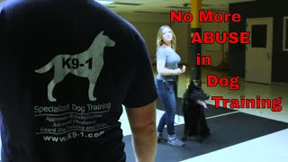 Learn How to Train Dogs like a Professional (K91.com)