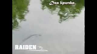 Воблер Raiden Riptide M 65F