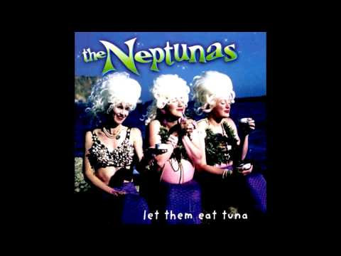 The Neptunas - Faster, Pussycat! Kill! Kill! (The Bostweeds Surf Cover)