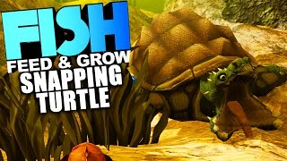 Vdyoutube download video chkn giveaway new creature for Feed and grow fish online