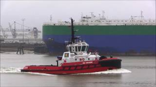 Thames Shipping by Richie Sloan, CRYSTAL RAY, MORNING LUCY,CELESTINE