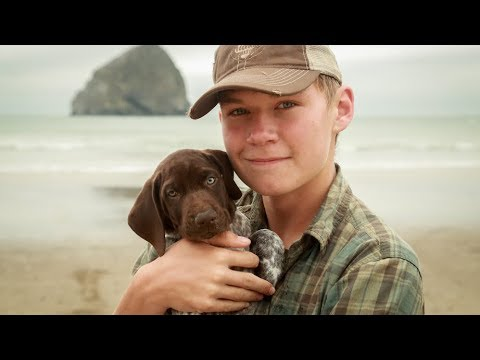 WE GOT A PUPPY! - Roadtrip With New GSP Puppy /// EFRT EP 107