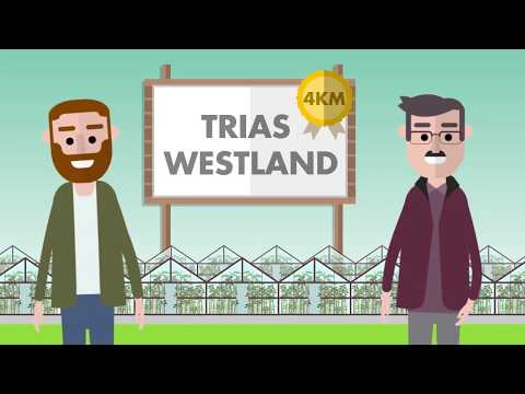 Sustainable energy from the Westland soil (The Netherlands)