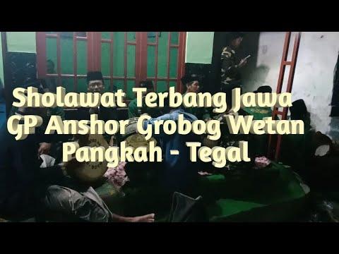 Sholawatan Terbang Jawa By GP Anshor Grobog Wetan-Pangkah-Tegal