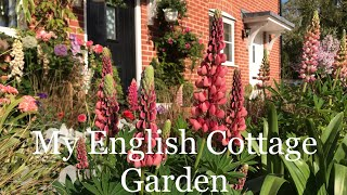 My English Cottage Style Front Garden.