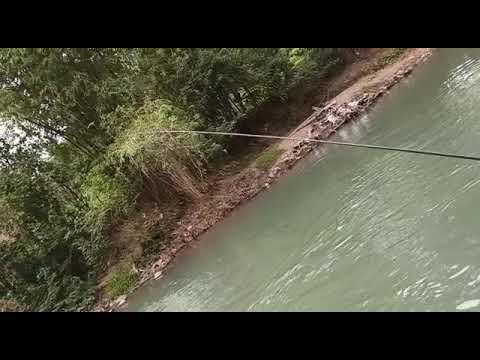 Mancing ikan melem di sungai elo magelang - YouTube