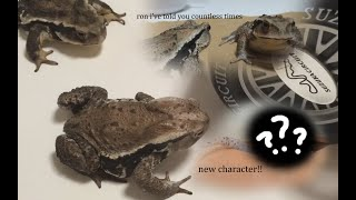 frog commentary 7