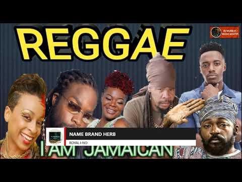 Download NEW REGGAE MIX AUGUST 2021 I AM JAMAICAN LUTAN FYAH,ROMAIN VIGO,CHRIS MARTIN.ALAINE DJ MURRAY