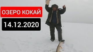 14 12 2020 Коргальжино Рыбалка на озере Кокай