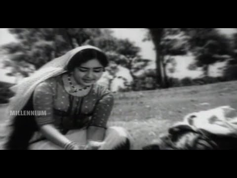 Evergreen Film Song | Aattuvanchi Kadavilvachu | Kayamkulam Kochunni | Malayalam Film Song