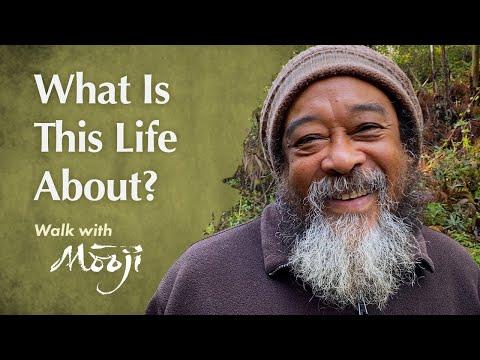 À quoi rime cette vie ?