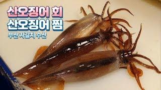 [4K]Make a live squid sashimi & Squid steamed _Korean seafood