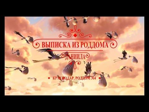 Выписка из роддома №4 Краснодара 24.04.2015 (8989-27-27-282)