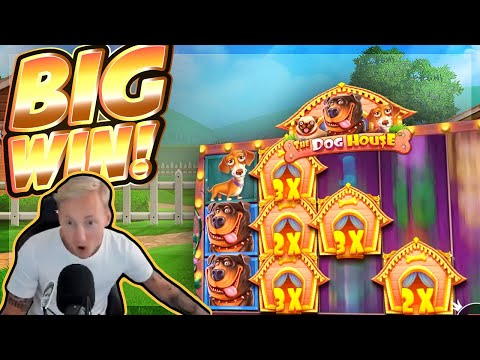 BIG WIN!!! Dog House BIG WIN!! Casino Slot From CasinoDaddy Live Stream