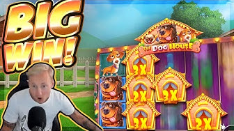 BIG WIN!!! Dog House BIG WIN!! Casino Slot from CasinoDaddy Live Stream