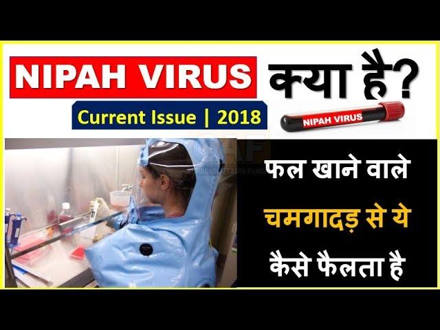 NIPAH VIRUS क्या है ? (IN हिंदी) | फल खाने वाले चमगादड़ से ये कैसे फैलता है | Current ISSUE TOPIC