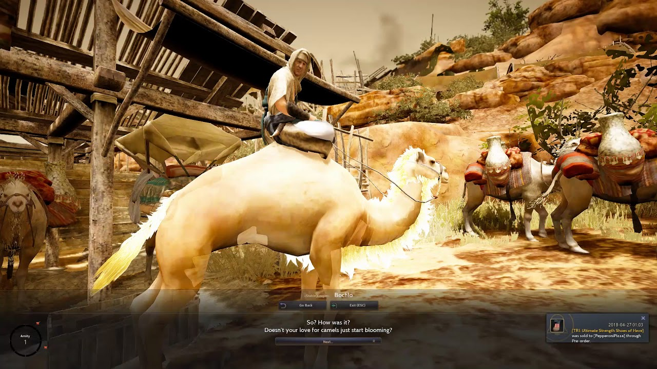 TIPS 15 : FREE CAMEL FROM BOCHLO - BLACK DESERT ONLINE SEA