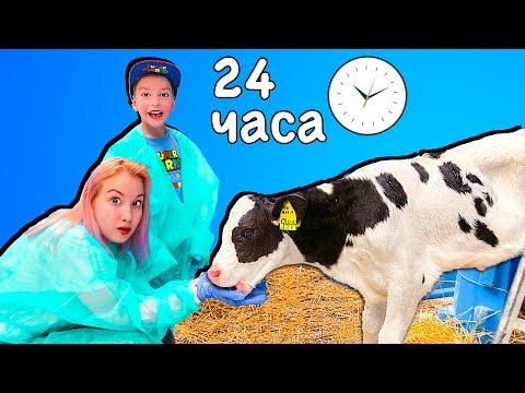 Света и Богдан 24 часа на ферме! Мама устроила челлендж