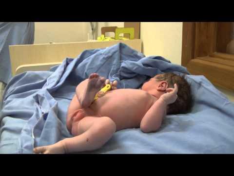 Nascimento Manuela Dresch de Moraes