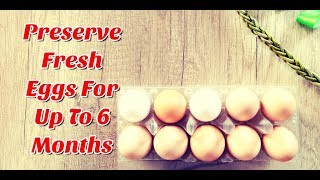 How To Store Eggs For Long Time - Long Term Egg Storage