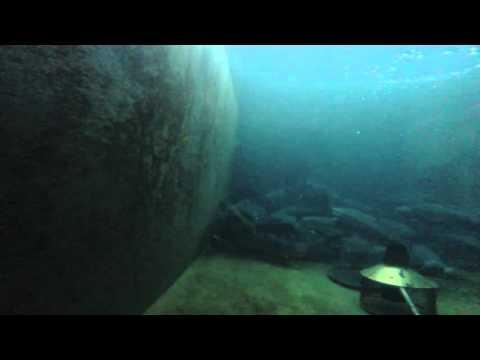 форель самки 3.5 - 4 кг подводная съемка