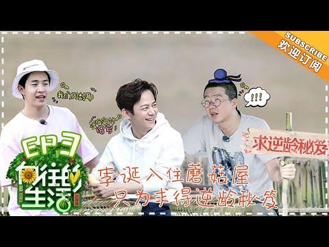 《Back to Field 2》EP3  Huang Lei, Peng Yuchang, He Jiong, Henry Lau【湖南卫视官方频道】
