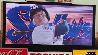 2019/04/03 開幕シリーズ 東京ヤクルトスワローズ×横浜DeNAベイスターズ...