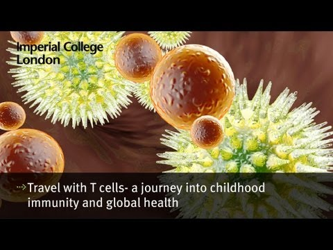 Travel with T cells- a journey into childhood immunity and global health