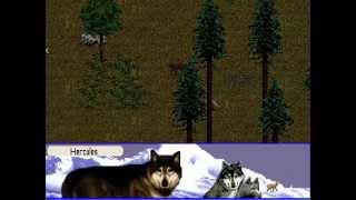 Wolf - Arctic Region - Find The Den (scenario #1)