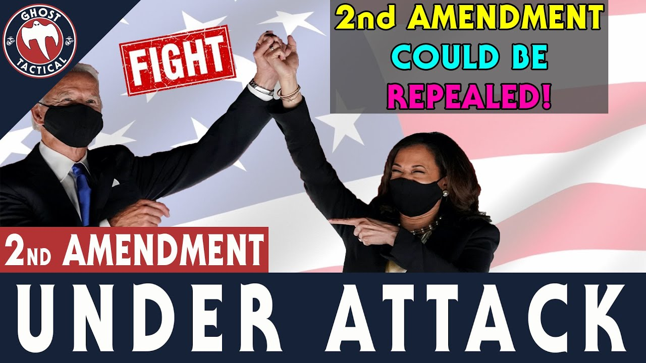 BREAKING NEWS l 2ND AMENDMENT COULD BE REPEALED l What Can You Do To Fight?