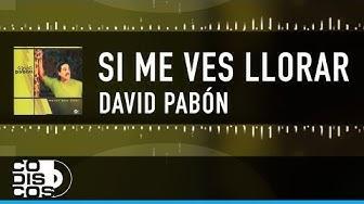 David Pabon - Si Me Ves Llorar  | Vídeo Lyric (Letra)
