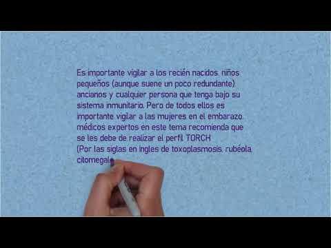 toxoplasmosis en inglés