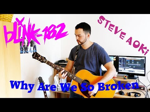 Steve Aoki feat. blink-182 - Why Are We So Broken (Acoustic Cover) by Lucas D.