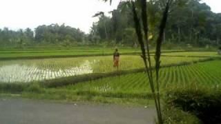 Video Kacapi Suling 'Rajah Galunggung' download MP3, 3GP, MP4, WEBM, AVI, FLV Juni 2018