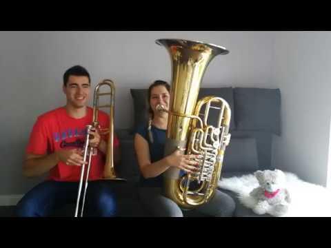 AronChupa, Little Sis Nora - Llama In My Living Room - Double Brass (Trombone & Tuba Cover)