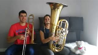 AronChupa, Little Sis Nora - Llama In My Living Room - Double Brass (Trombone & Tuba Cover)