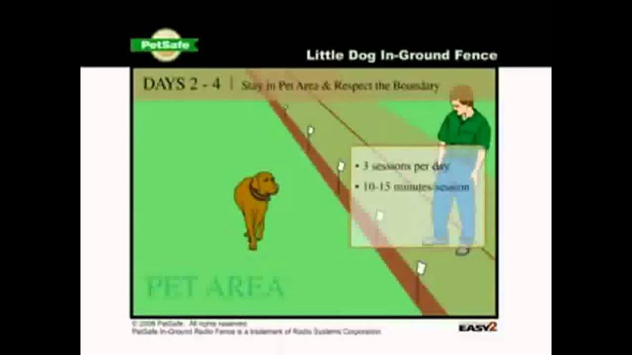 Petsafe Little Dog In Ground Fence