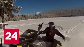 Каскадер: снегоход опаснее мотоцикла
