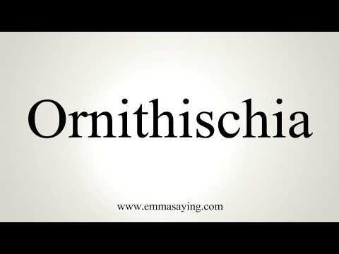 How To Pronounce Ornithischia