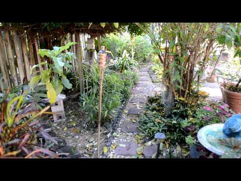South Florida Winter Garden