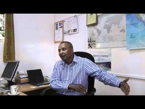 Francesco Illy: Coffee production in Kenya