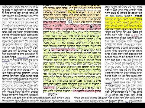 הדף היומי מסכת מעילה דף ב Daf yomi Meilah daf 2 שמואל נבון Shmuel Navon