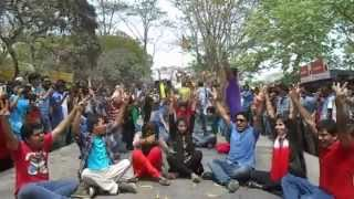 ICC World T20 2014 Flash MOB by Govt  Saadat College, Tangail