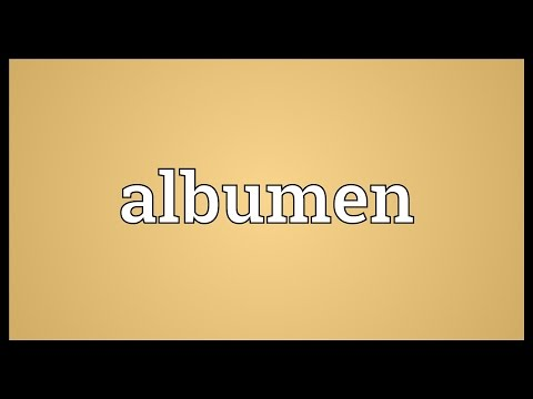 Albumen Meaning